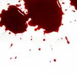 Fjern blodpletter og blod