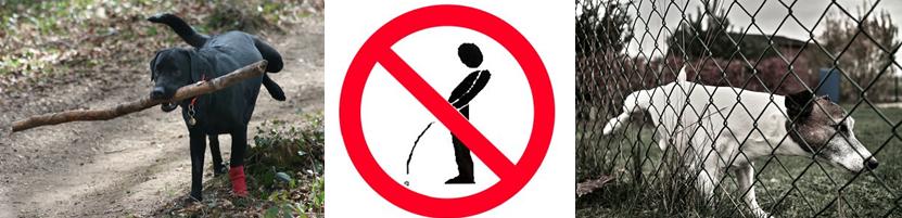 Fjern tis og urin