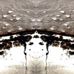 Fjern skimmelsvamp og mug fra badeforhæng, flisevæg, badeværelse og kælder