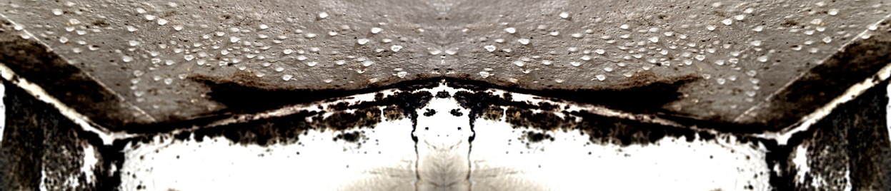 Fjern skimmelsvamp og mug fra badeforhæng, flisevæg, badeværelse og ...