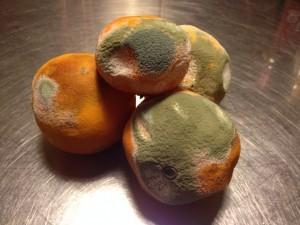 Rådne-appelsiner-300x225