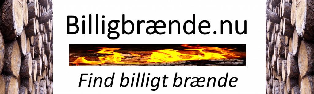 Billig-brænde.nu-logo-1024x309